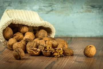 Welke dieren eten walnoten?